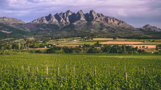 WWinelands Getaway In Wellington IOL