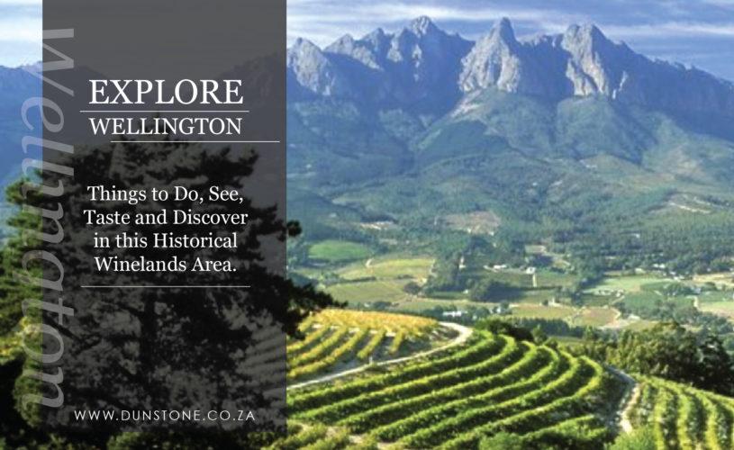 Explore Wellington