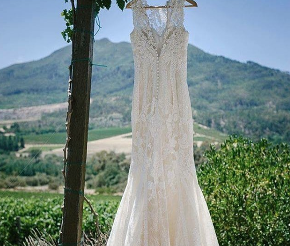 """A Cape Winelands Wedding: Where To Say """"I Do"""" in Wellington"""